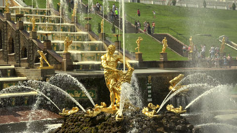 Samson Fountain. Peterhof. Fountains. Petrodvorets Footage