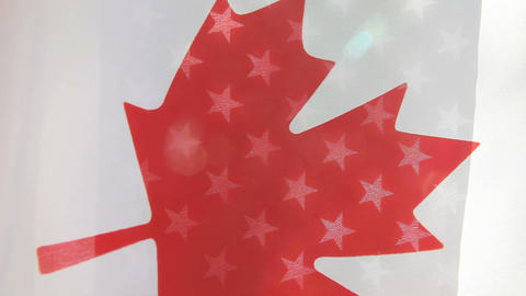 Canada And USA Flags stock footage