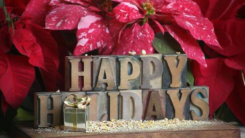 chickadees happy holidays Footage