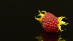 Fresh raspberries Footage