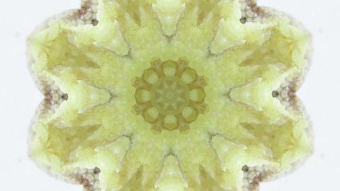 yellow stone background Animation