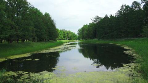 Lake, pond. Pushkin. Catherine Park. Tsarskoye Sel Footage