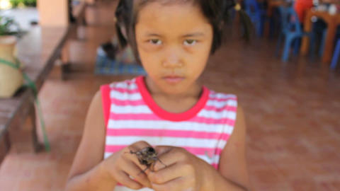 Cute Asian Girl Playing With Large Beetle Bug ビデオ