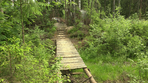 A wooden bridge in the forest. 4K Footage