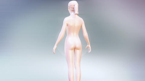 Slim body animation Stock Video Footage