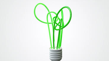 Lightbulb Stylised Green Tree Animate stock footage