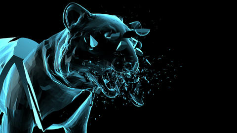 Distorted 3D Tiger Animation
