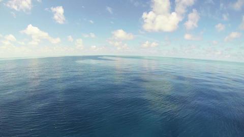 青い海と水平線 ライブ動画