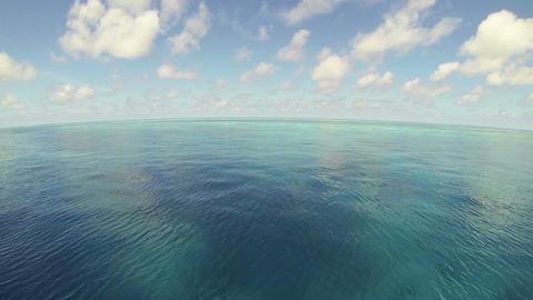珊瑚礁と青い空 ライブ動画