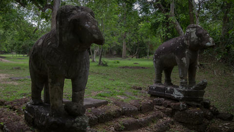 Elefants in Angkor temple slider timelapse Footage