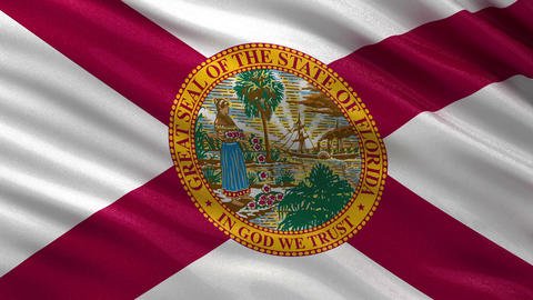 US state flag of Florida seamless loop Animation