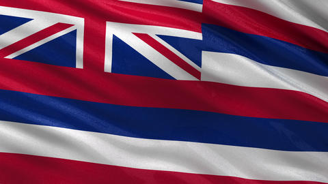 US state flag of Hawaii seamless loop Animation