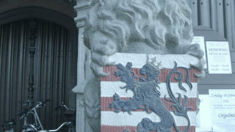 Coat Of Arms Of Belgian City Of Bruges And Lion stock footage