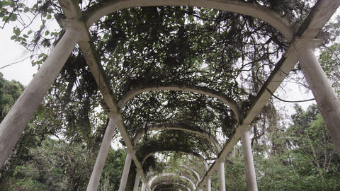 Tracking shot along path beneath arches at the Jardim Botanico in Rio Footage
