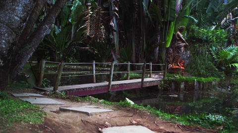 Panning shot of wooden bridge and forest in Botanical garden Footage