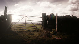 Rural landscape scene with a Farmer's gate and dry Footage
