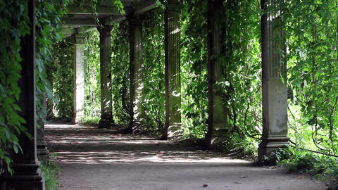 shady walkway with columns Footage