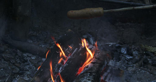 Veggie hot dog roasting on fire ビデオ