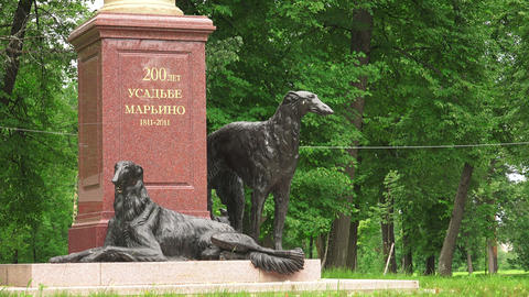 Sculpture Greyhounds. The Estate Marino. 4K stock footage