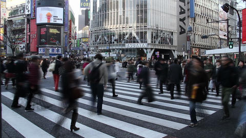 Shibuya crossing ライブ動画