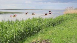 Children's Kayak Race, Kayaking In Nature stock footage
