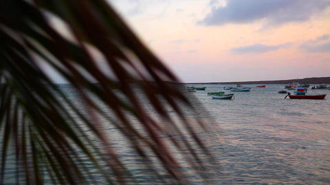 dolly shot of boats on the sea on Boa Vista Footage