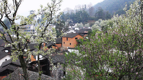 wuyuan50 Stock Video Footage