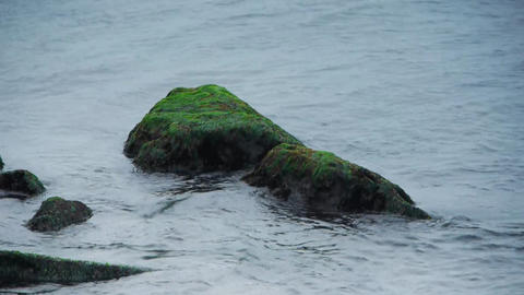 Mossed rock with waves Footage
