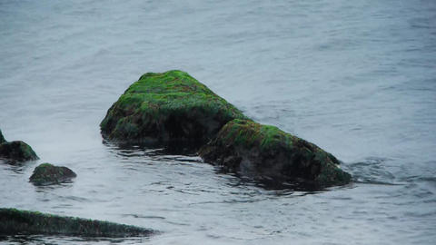 Mossed rock with waves Stock Video Footage