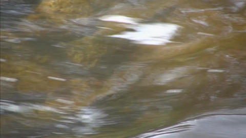 River water flow extreme closeup Footage