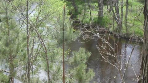 River water flowing pan out Stock Video Footage