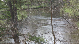River water flowing tree in forground Stock Video Footage