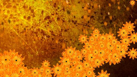 Waltz of flowers Stock Video Footage