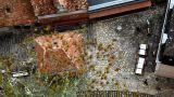 Garden And Backyard In Rocamadour stock footage
