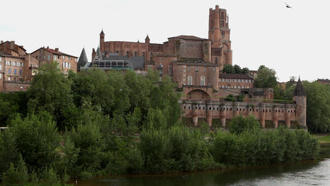 Castle and trees near lake, Albi, France Stock Video Footage
