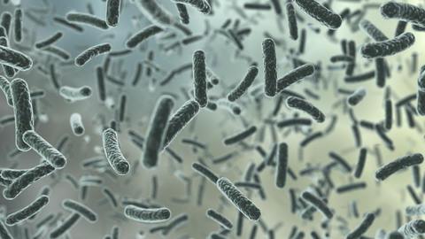 Virus Cell C bb Stock Video Footage