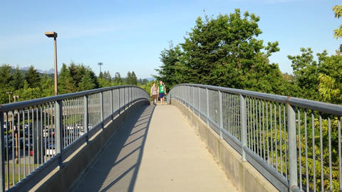 Young Couple Walking On The Bridge stock footage
