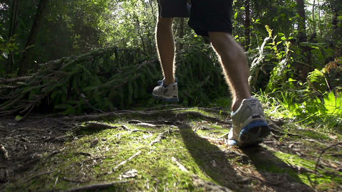 SLOW MOTION: Man Jogging Through The Forest stock footage