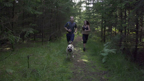 SLOW MOTION: A young couple jogging with a dog in  Footage