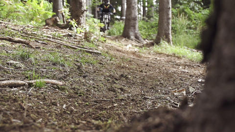 SLOW MOTION: Biker riding downhill through forest Footage