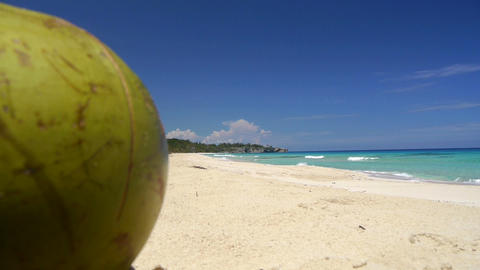 DOLLY: Coconut On The Beach stock footage