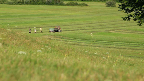 Farmers collecting hay Footage