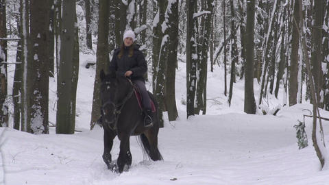Young woman horseback riding through forest in win Footage