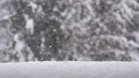 SLOW MOTION: Snow falling Footage