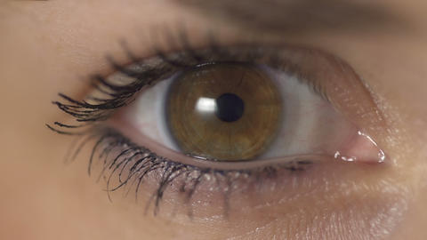 SLOW MOTION: Contraction of the pupil Footage