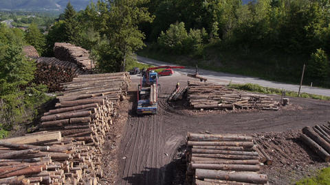 AERIAL: Loading stacked timber for transportation Live Action
