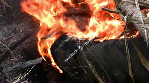 Burning smoking tire Footage