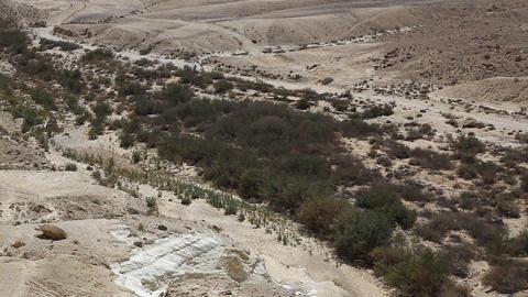 The wilderness of Zin Desert in the Negev district Footage