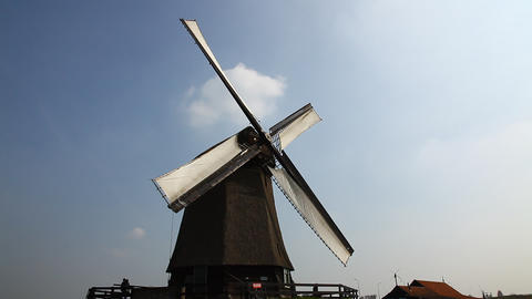 Windmills in Holland ビデオ