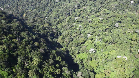 Aerial fly over tropical forest on hills Full HD Footage